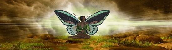 Fairy Fantasia Premier